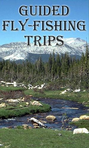 Colorado fly fishing guides arkansas river buena vista for Colorado fly fishing trips